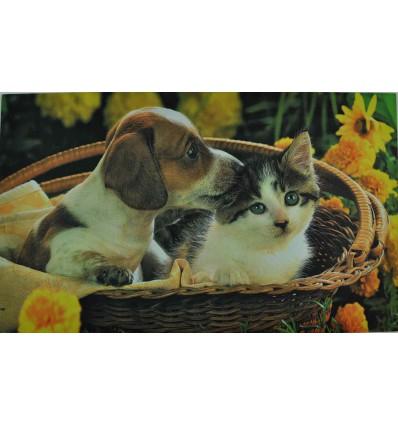 Cane e gatto tappetino 3 Digital 45x75 cm.