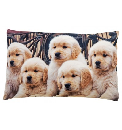 Pillow bed photographic print Labrador